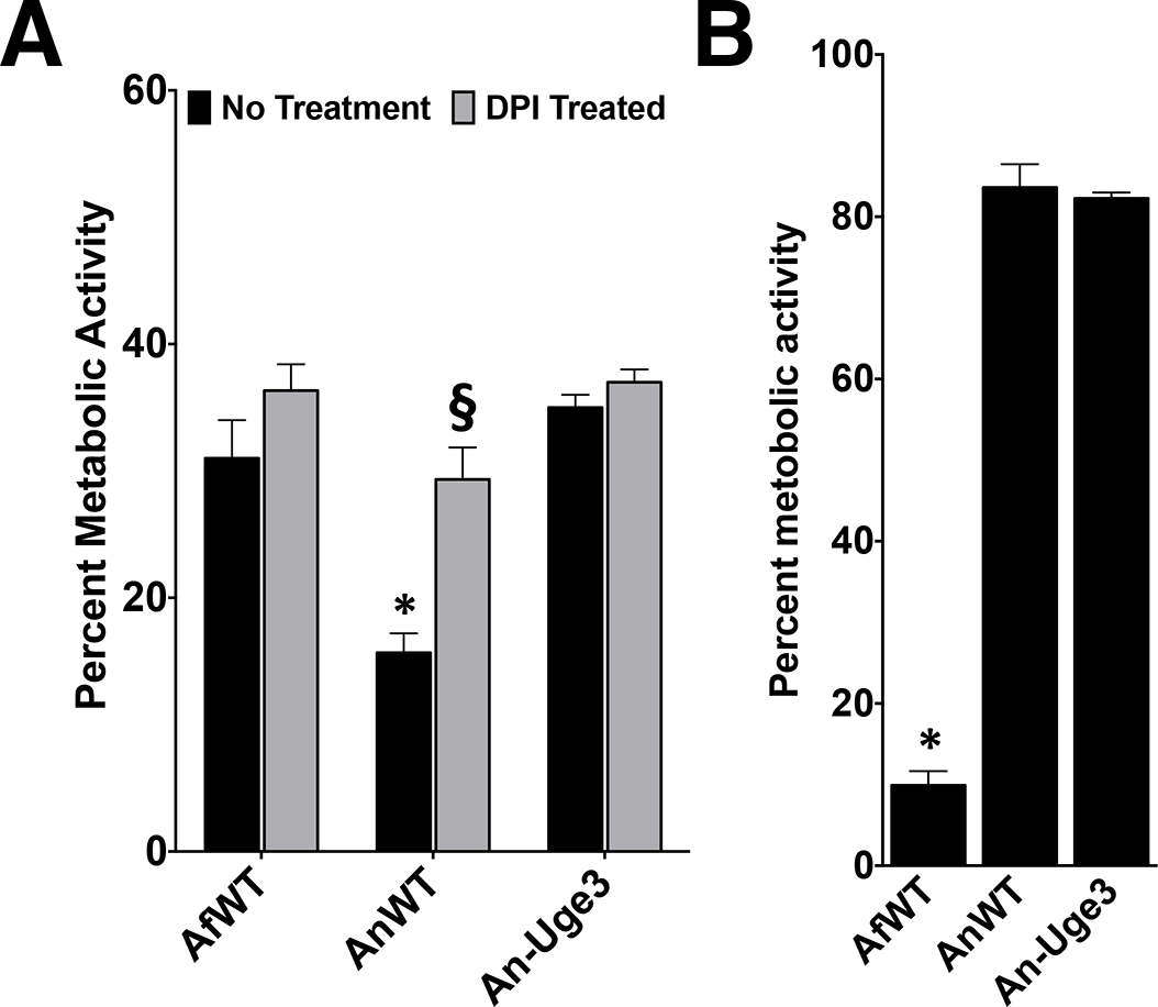 Increasing cell wall-associated GAG enhances the resistance of <i>A</i>. <i>nidulans</i> to NADPH oxidase-dependent neutrophil extracellular traps (NETs) but not reactive oxygen species.