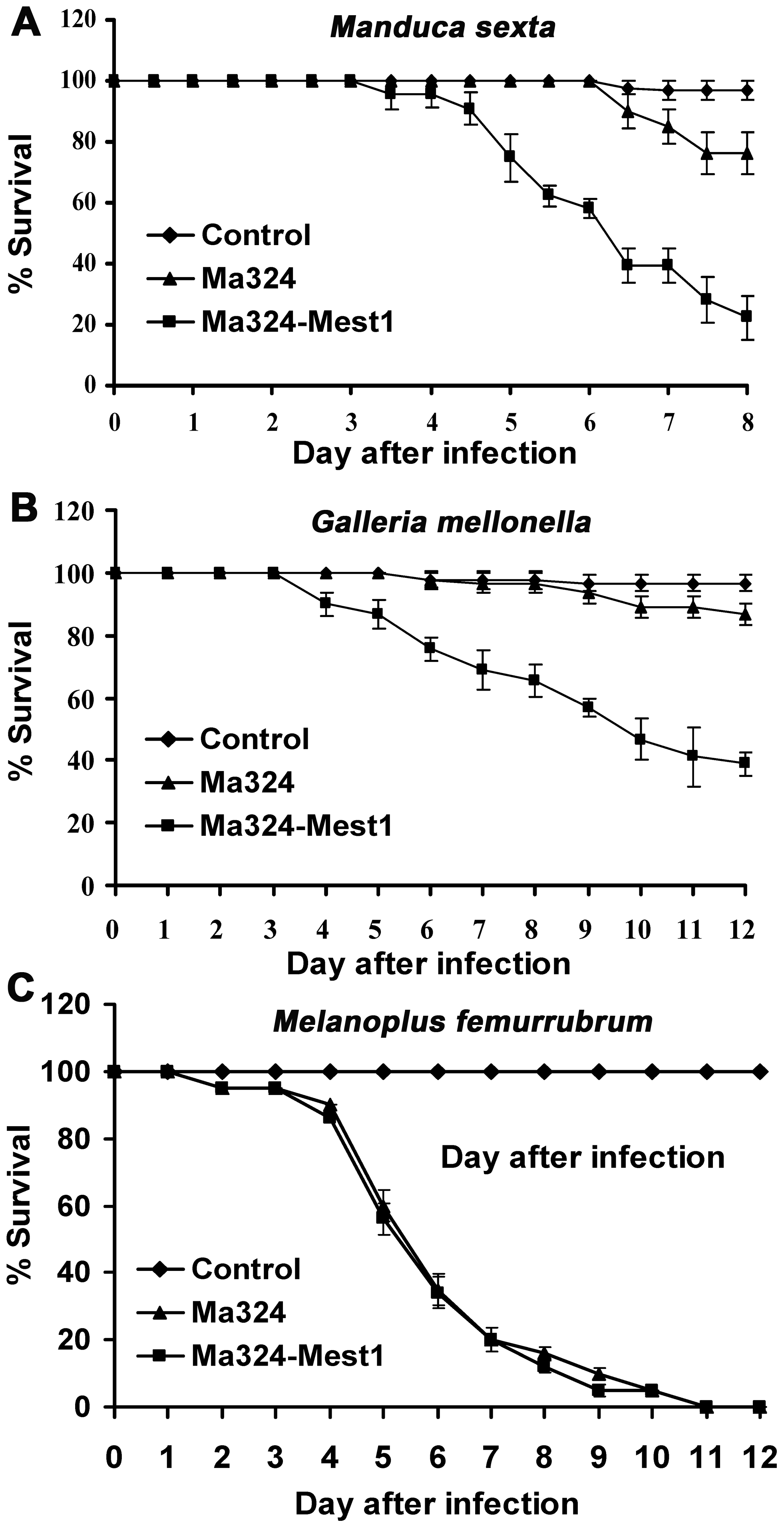 Pathogenicity of <i>Metarhizium acridum</i> strains.