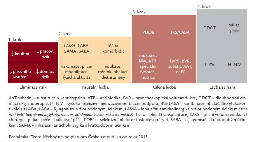 Podrobnější léčebné schéma dle Doporučeného postupu ČPFS (platné v České republice od května roku 2013, volně dostupné na webových stránkách ČPFS).
