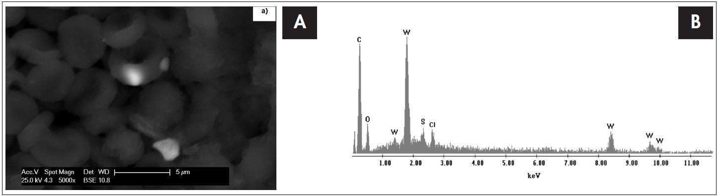 Snímek tkáně mozkového nádoru (glioblastom) s erytrocyty ze skenovacího elektronového mikroskopu s EDS detektorem s odpovídajícím EDS spektrem, který je výsledkem bodové analýzy. Píky označené písmenem W dokazují přítomnost nanočástice s obsahem wolframu v erytrocytu.