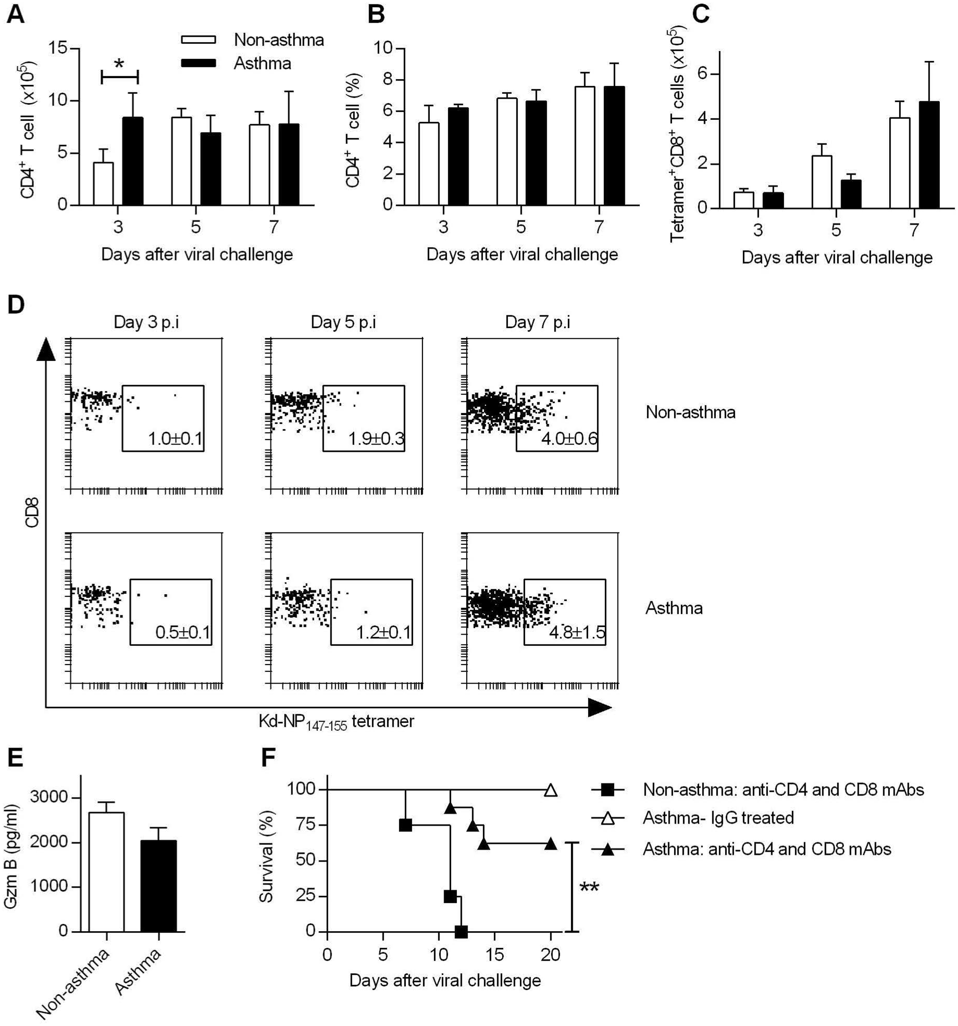 Increased resistance in asthmatic mice is T cell independent.
