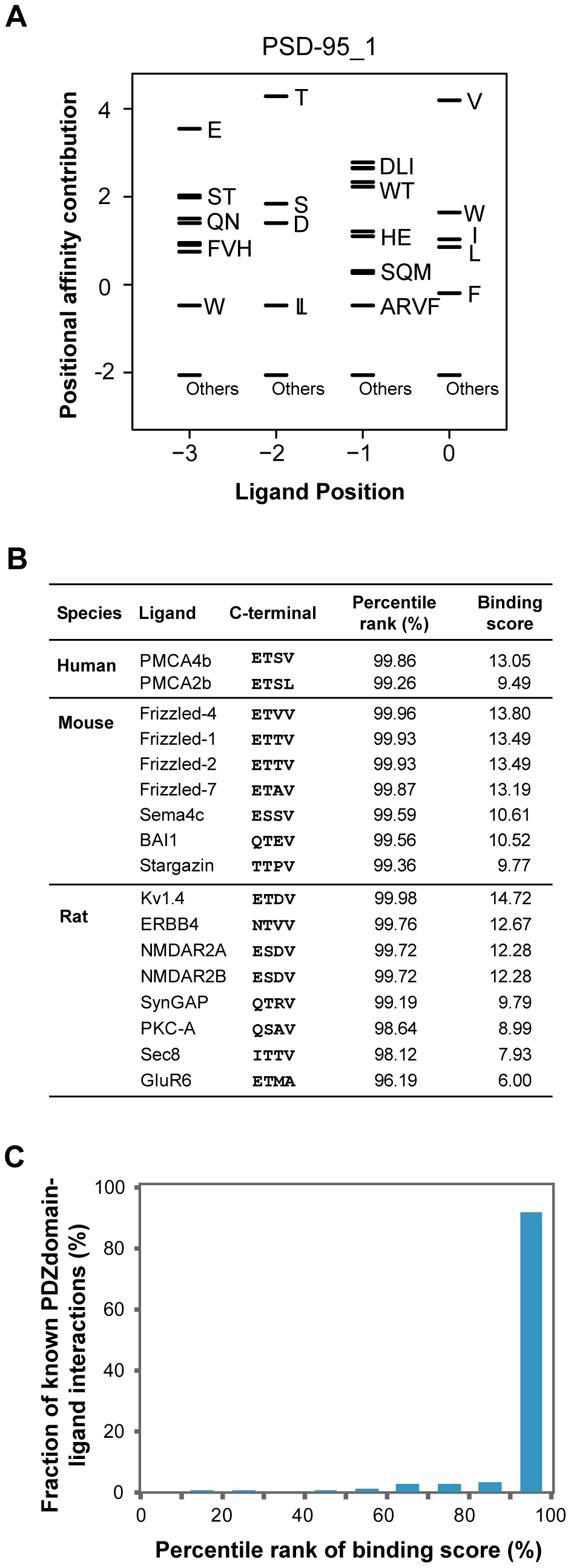 Validation of PWMs on <i>in vivo</i> partners.