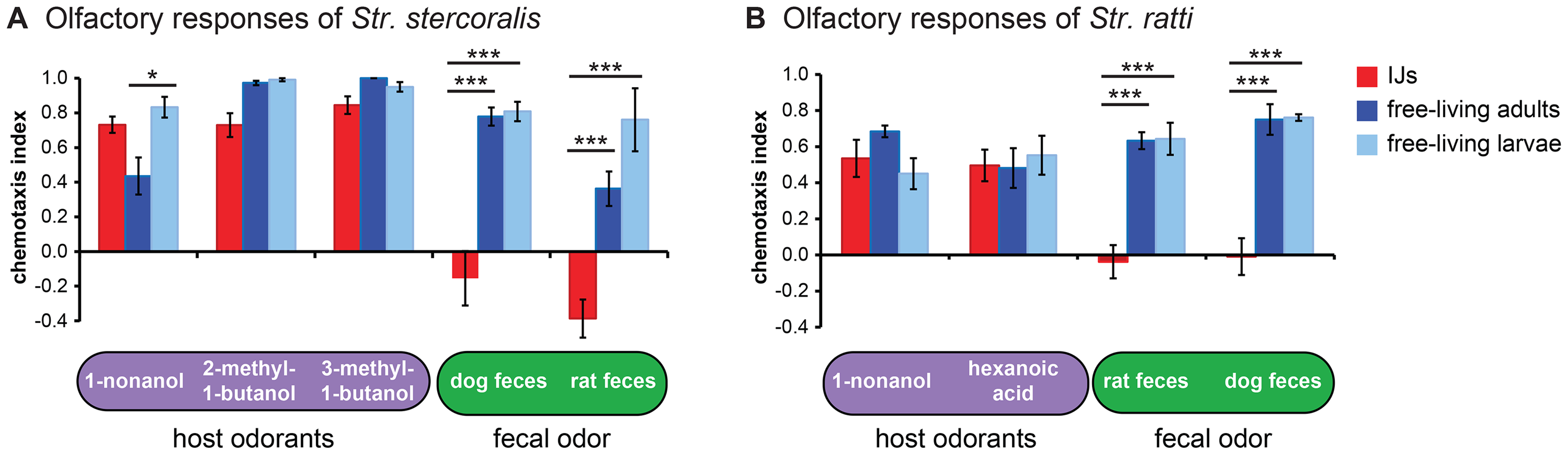 Olfactory responses of <i>Strongyloides</i> species vary across life stages.