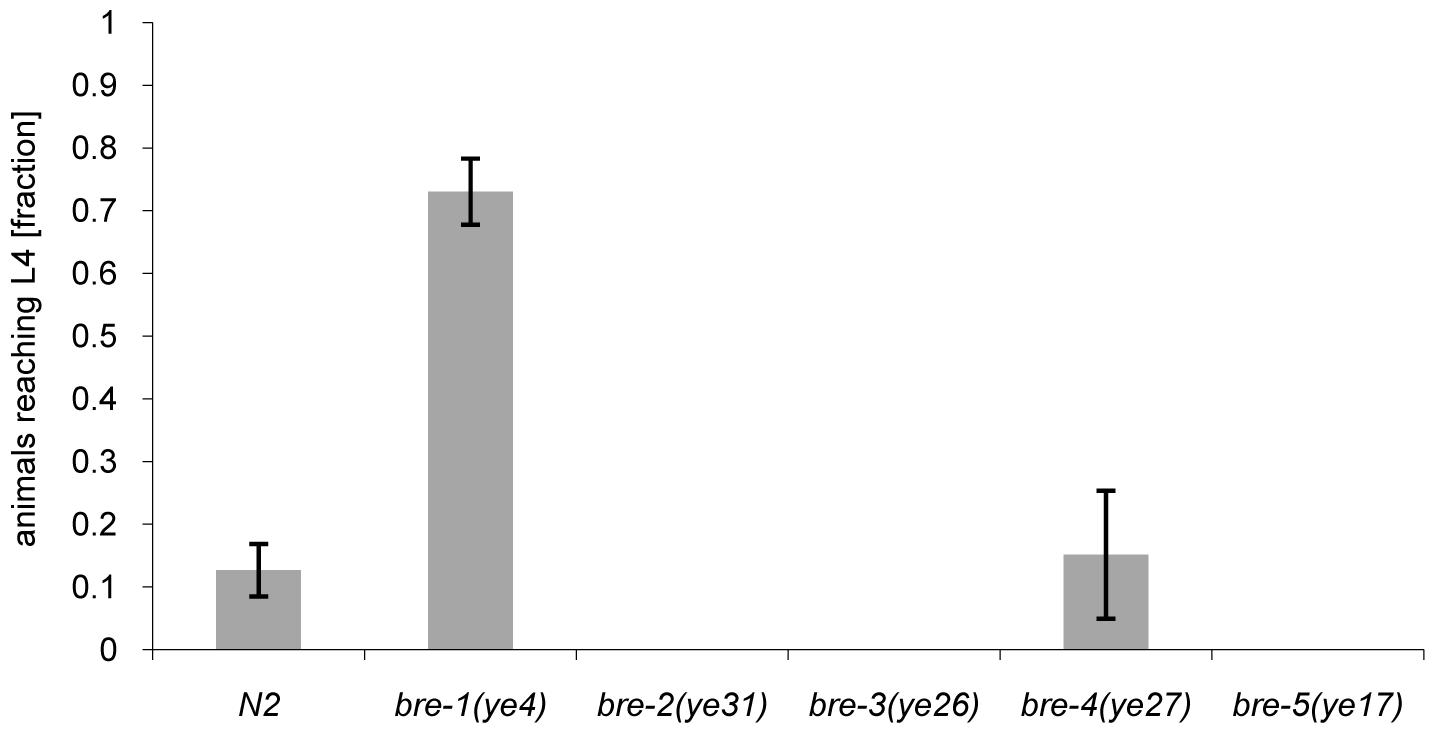 Resistance of <i>bre-1</i> mutant towards CGL2-mediated toxicity.