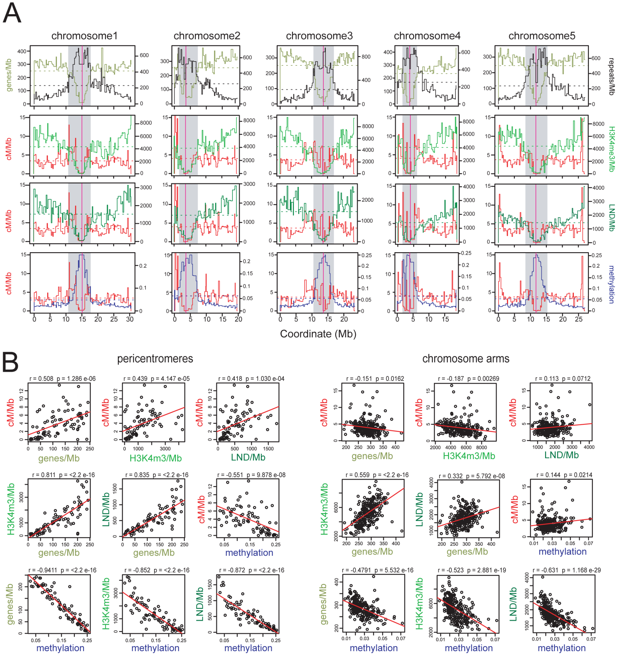 Epigenomic organisation and CO frequency in the <i>A. thaliana</i> genome.
