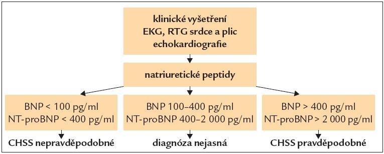 Diagnostika CHSS pomocí natriuretických peptidů.