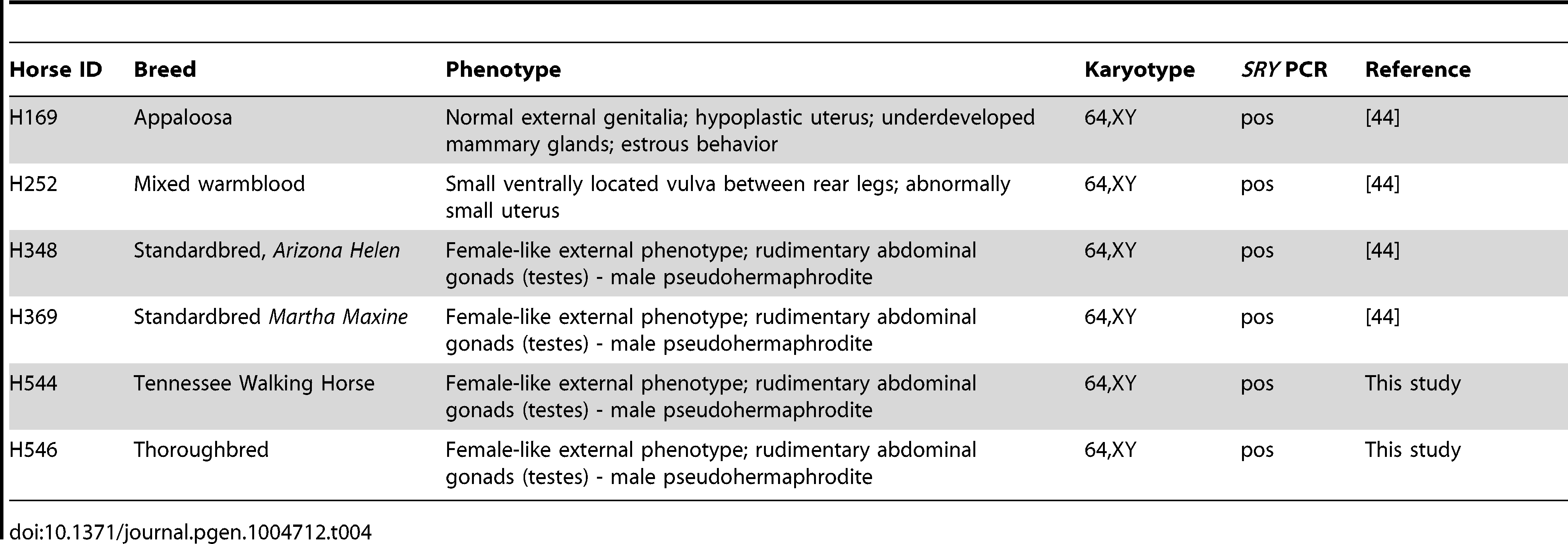 Horses with <i>SRY</i>-positive XY DSDs analyzed in this study.