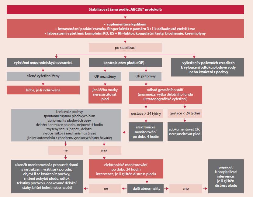 Schéma. Management první pomoci, vyšetření a léčebných kroků u těhotné ženy po závažném traumatu