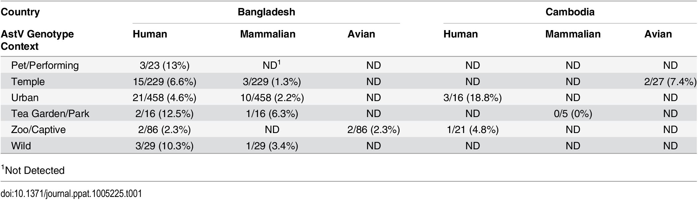 Diverse AstV genotypes detected in NHP samples.