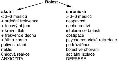 Schéma 1. Vzorce změn u akutní a chronické bolesti