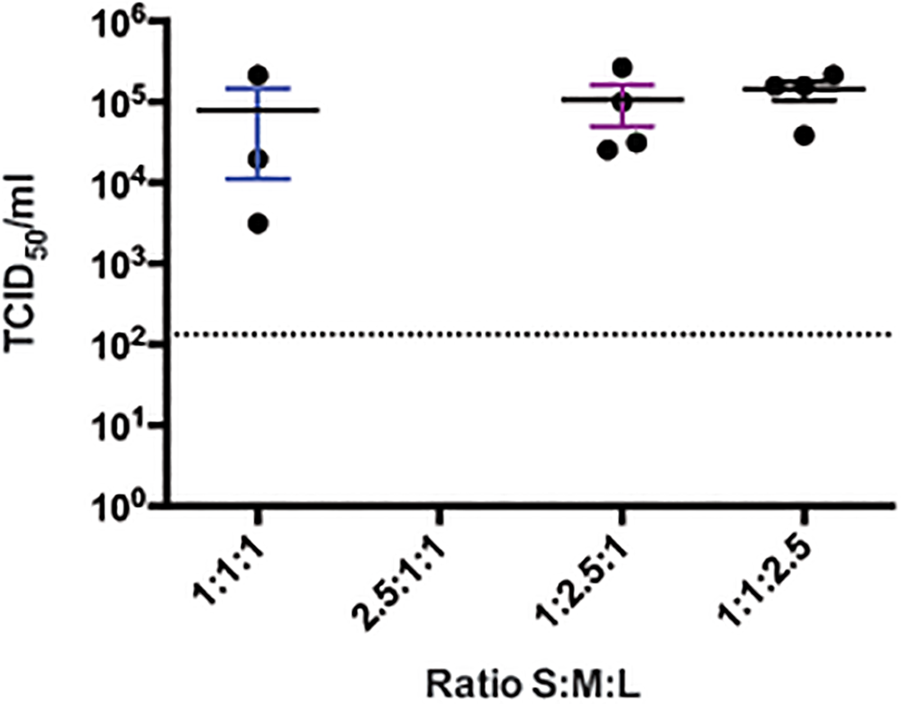 CCHFV rescue efficiency using varying ratios of plasmids producing complementary genome segments in BSR-T7/5.