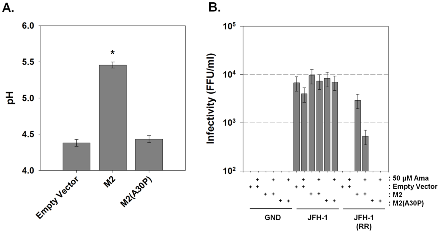 Influenza M2 protein can trans-complement an HCV p7 channel mutant.