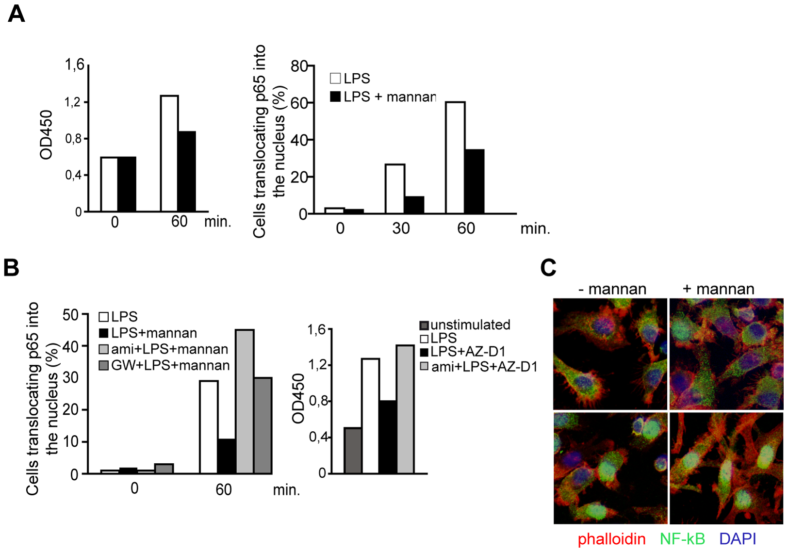 SMase dependent DC-SIGN signaling dampens rather than enhances TLR-stimulated NF-κB activation.