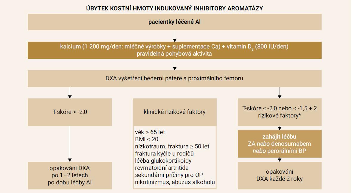 Schéma 1. Navržený postup pro prevenci a léčbu úbytku kostní hmoty indukovaného inhibitory aromatázy (AI). Upraveno podle [4]