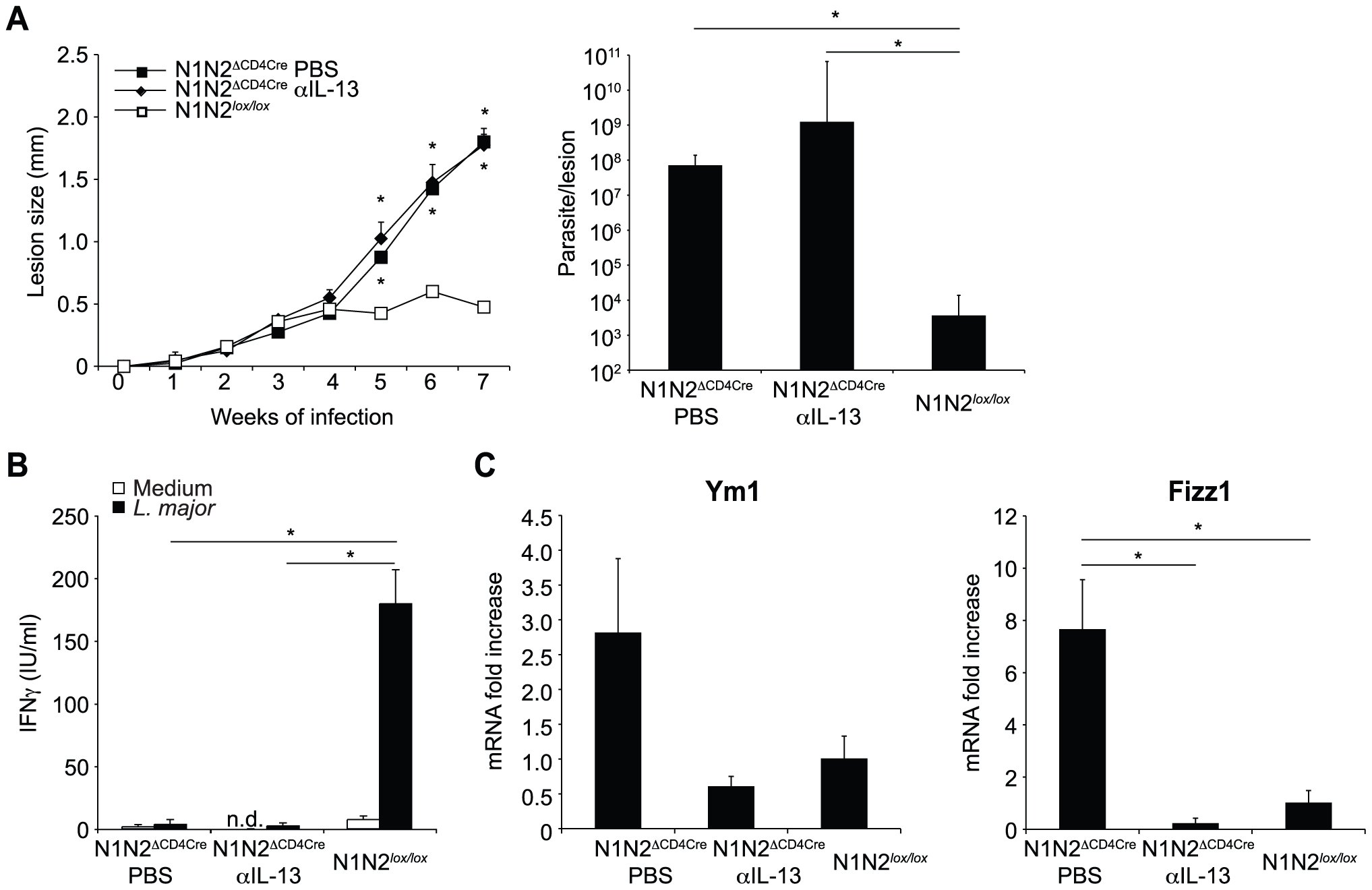 Treatment with anti-IL-13 does not restore resistance of N1N2<sup>ΔCD4Cre</sup> mice to <i>L. major</i>.