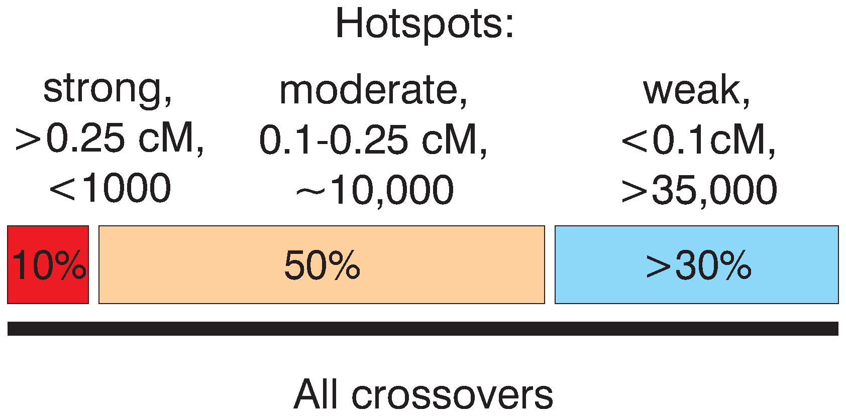 Schematic representation of the relative input of strong and weak hotspots to the total set of crossovers.