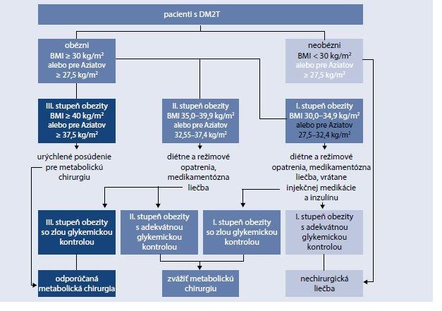 Schéma 17.3 | Rozhodovací algoritmus pre bariatricko/metabolickú chirurgiu u diabetikov 2. typu