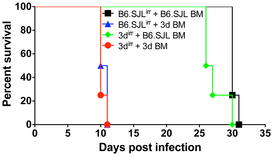 Cells from hemopoietic compartment bearing the <i>UNC93B1</i> mutation are responsible for enhanced susceptibility of 3d mice to <i>T. gondii</i> infection.