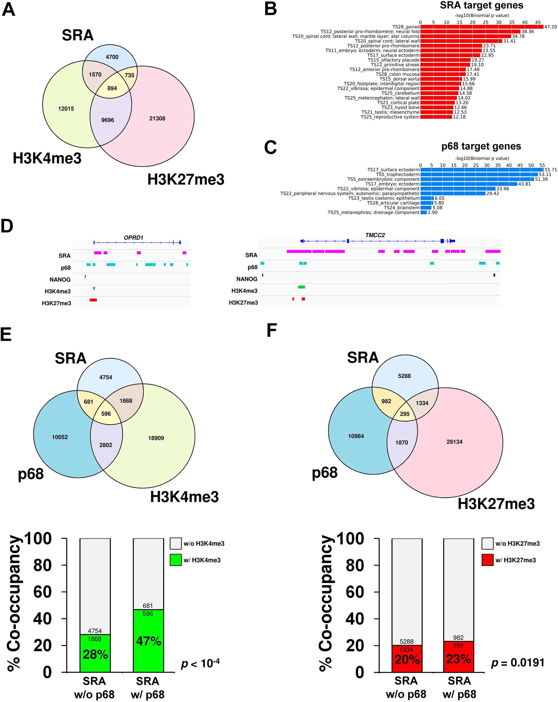 p68 and SRA colocalize at bivalent promoters in pluripotent stem cells.