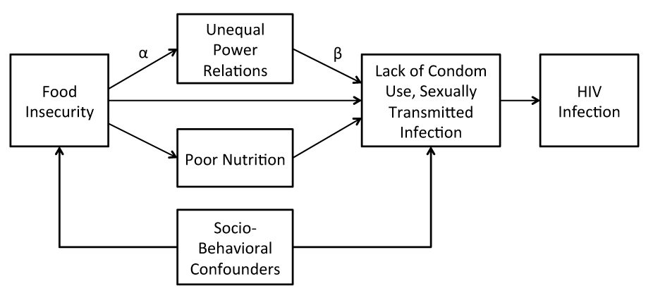 Conceptual framework linking food insecurity to HIV risk.