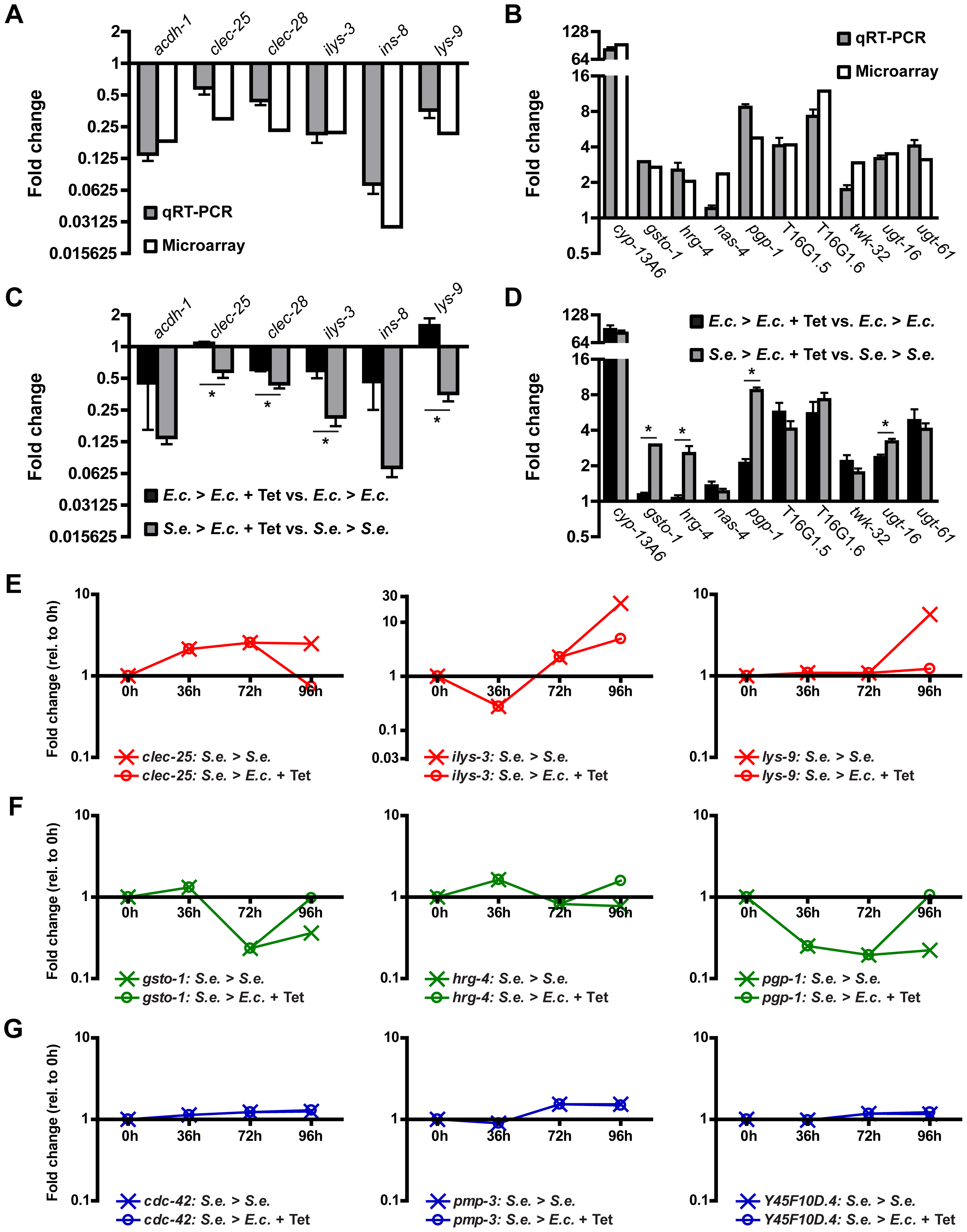 Gene expression changes in infected animals treated with Tetracycline.