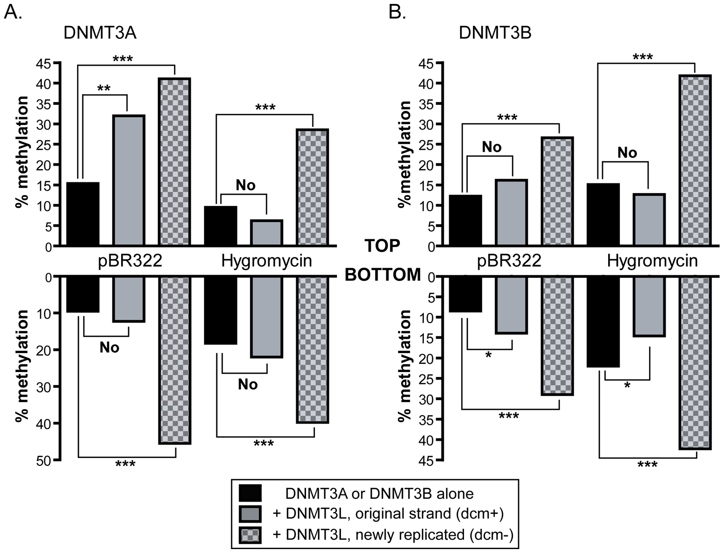 Stimulation by DNMT3L is observed primarily on newly replicated DNA strands.
