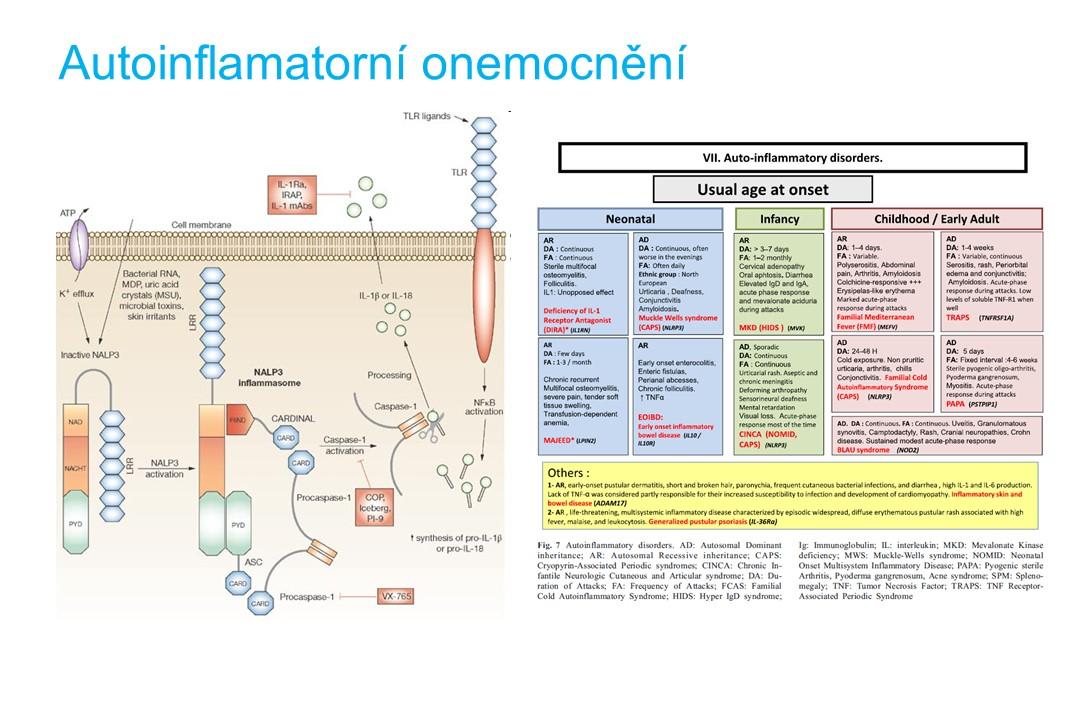 Imunodeficience - 25