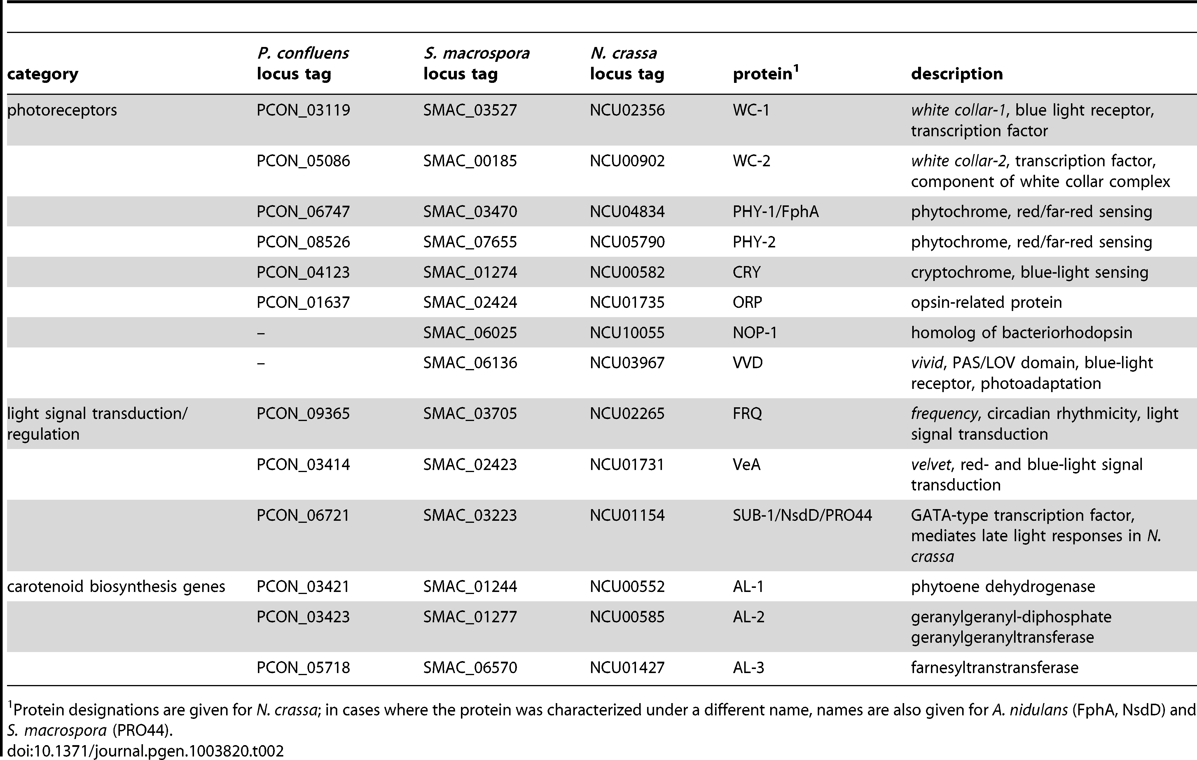 <i>P. confluens</i> homologs of photoreceptor genes, genes involved in light signaling or light-regulated carotenoid biosynthesis genes in other fungi.