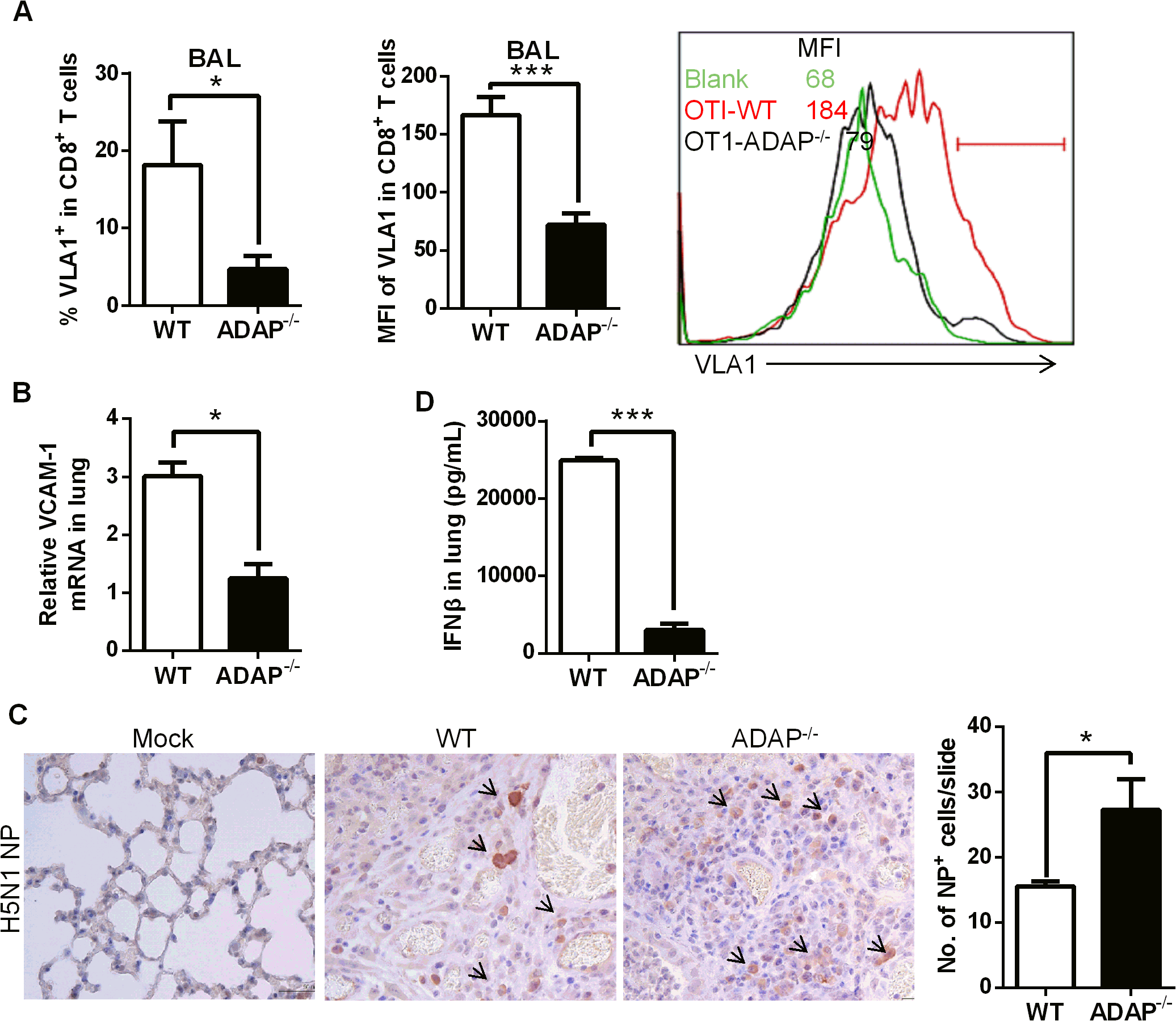 ADAP deficiency decreases VLA-1 expression in CD8+ T cells with increased amount of H5N1 virus.