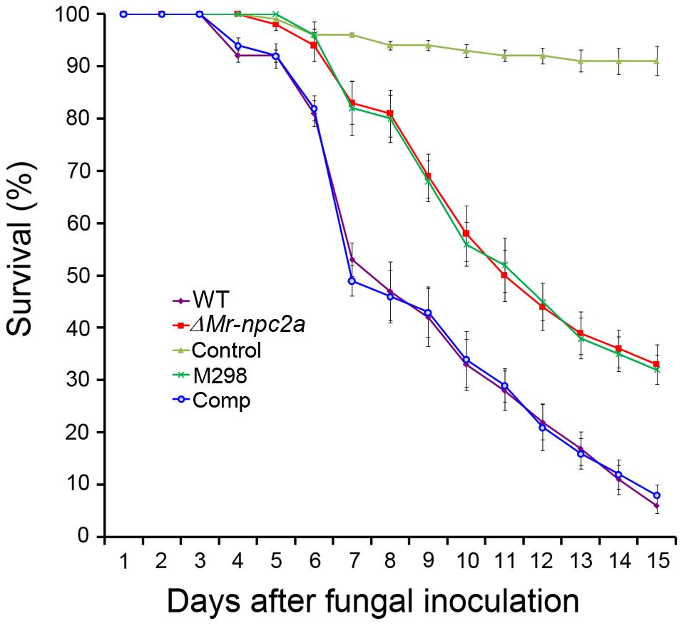 Kinetics of insect survivorship in bioassays.