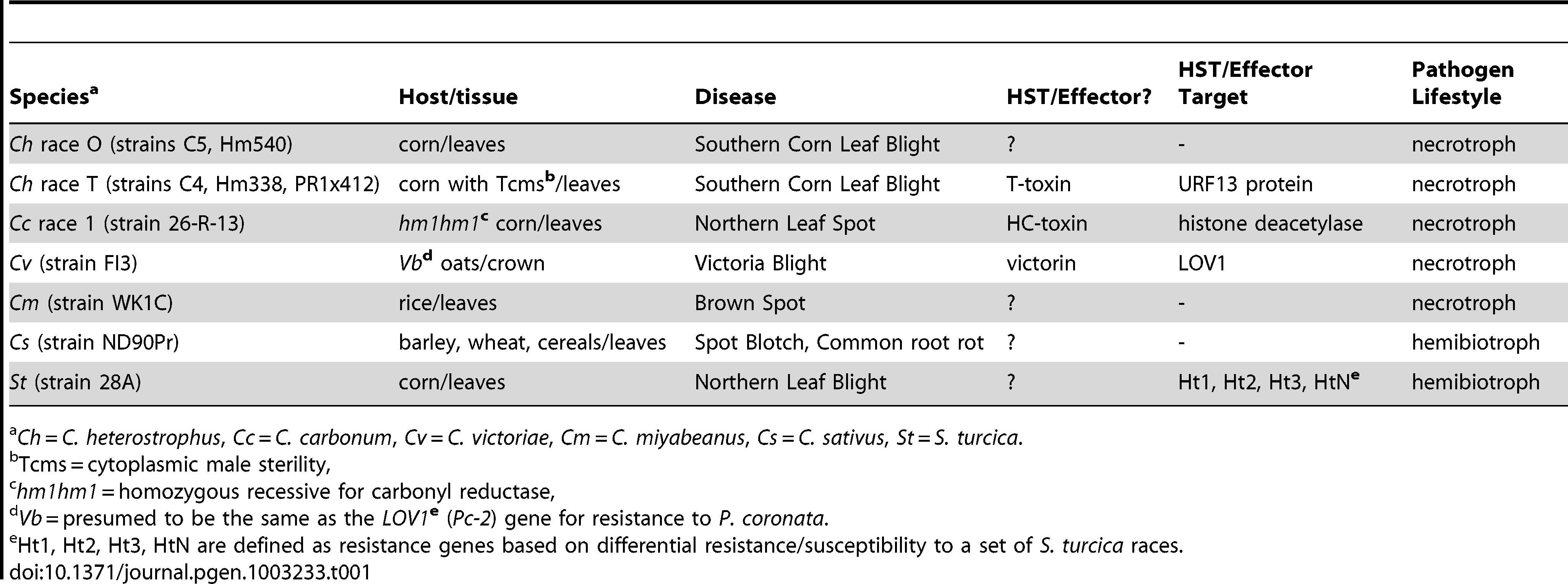 <i>Cochliobolus</i> and <i>Setosphaeria-</i>host interaction biology.