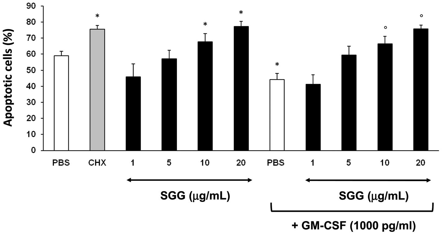 SGG induces neutrophil apoptosis.