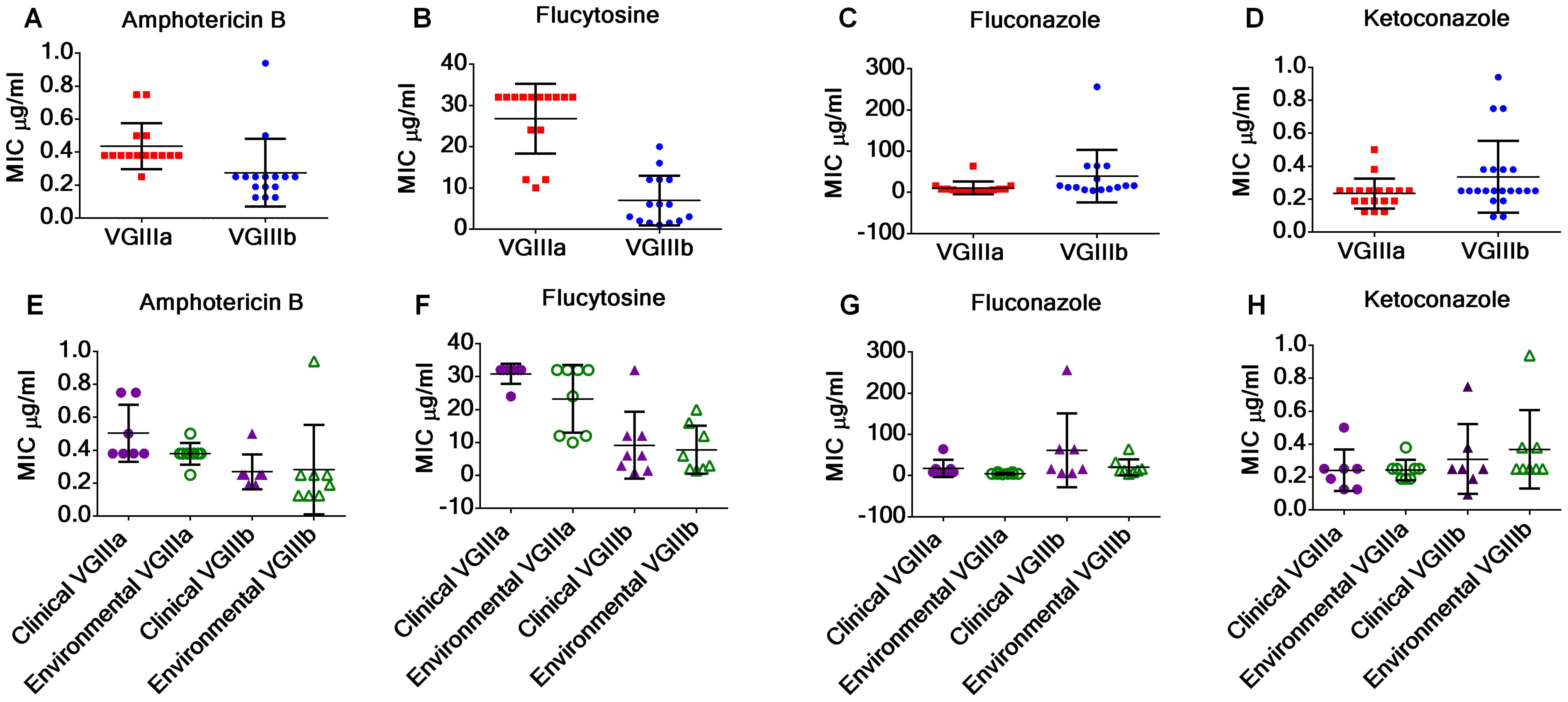 <i>C. gattii</i> VGIIIb isolates display higher antifungal susceptibility values to Amphotericin B and flucytosine in contrast to VGIIIa isolates.