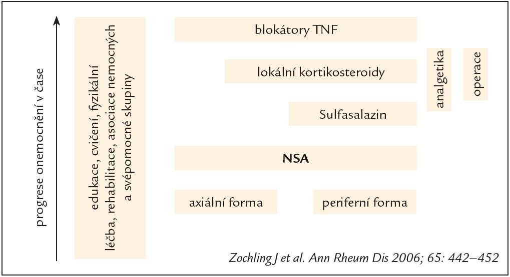 Schematické znázornění strategie léčby AS.