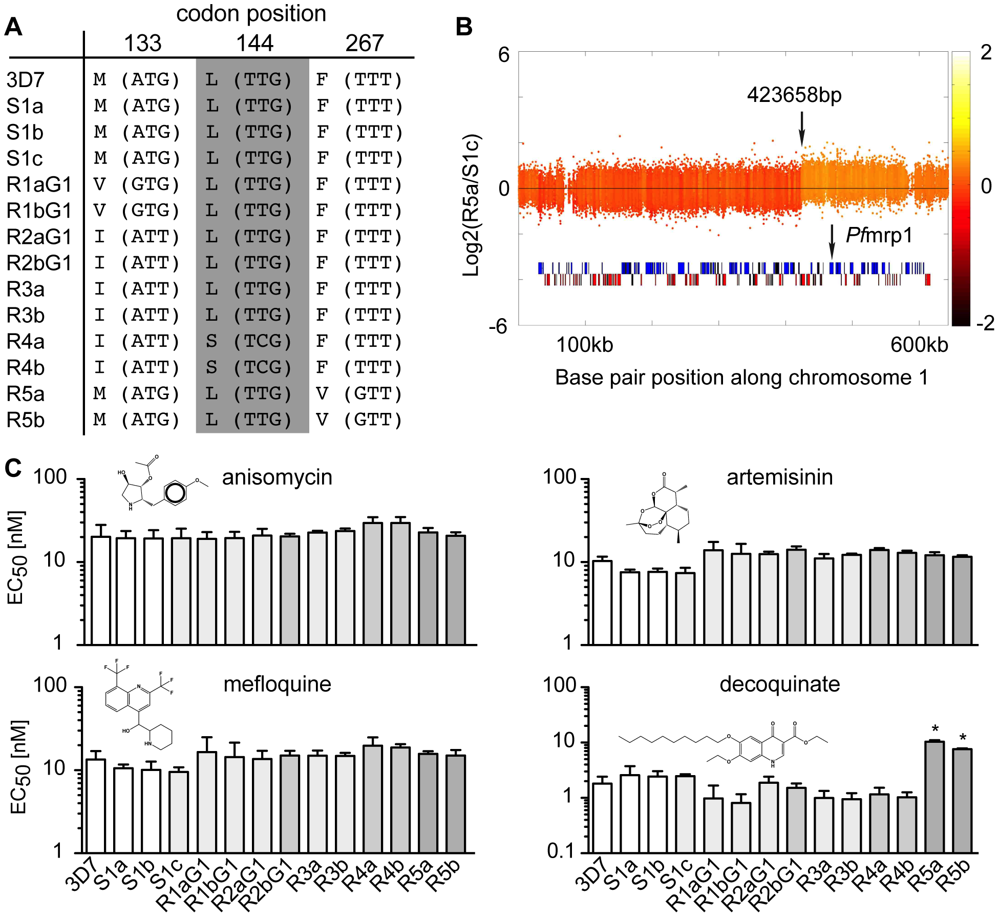 Genomic changes and drug sensitivities of atovaquone (ATQ)-selected clones.