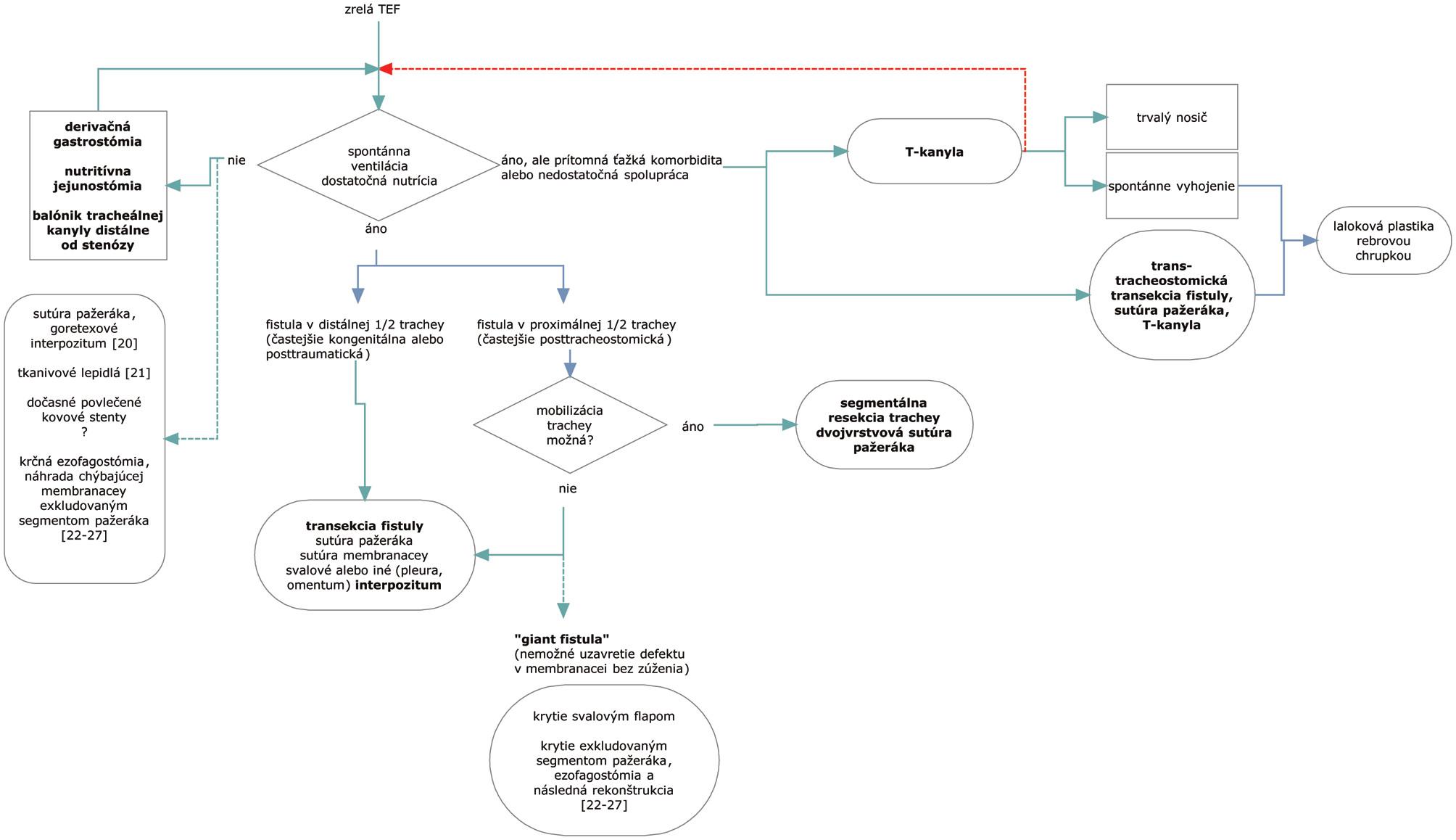 Algoritmus riešenia tracheoezofageálnej fistuly a možnosti alternatívnej liečby. Prerušované čiary predstavujú alternatívne postupy. Fig. 1. Algorithm of the tracheoesophageal fistula management and alternative therapeutical options. The dashed lines represent alternative procedures