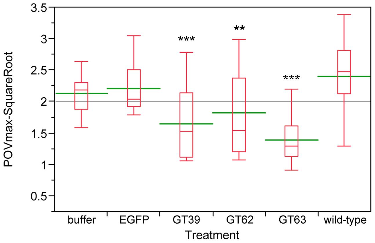 Phenol oxidase (PO) activity assays of wild-type and novel <i>quinone-less</i> gene RNAi knock-downs in females.