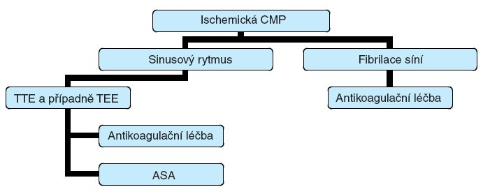 Algoritmus indikace echokardiografického vyšetření a antikoagulační léčby u nemocných s ischemickou CMP.