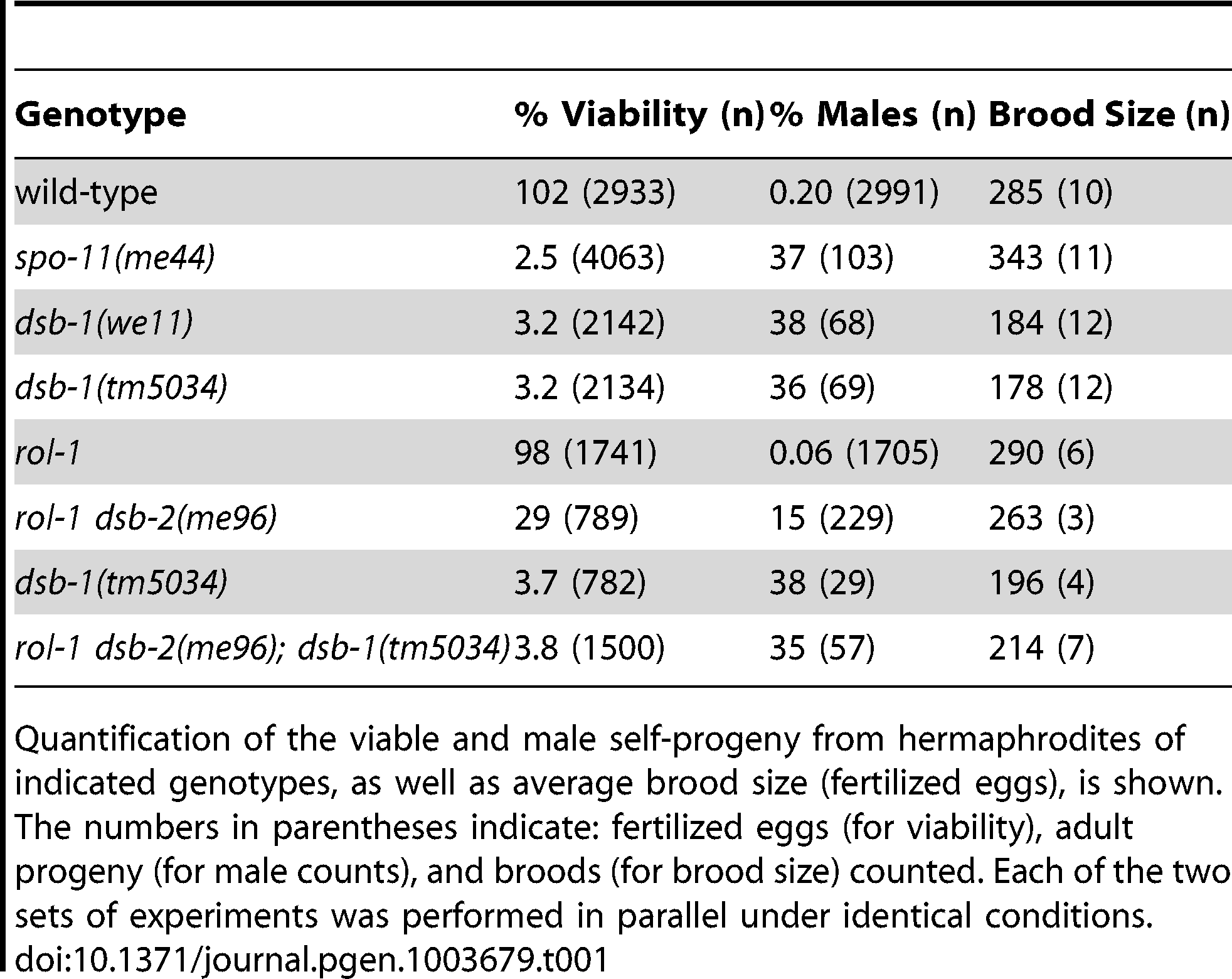 Progeny viability, incidence of males, and brood size from <i>dsb-1</i> and <i>dsb-2</i> mutants.