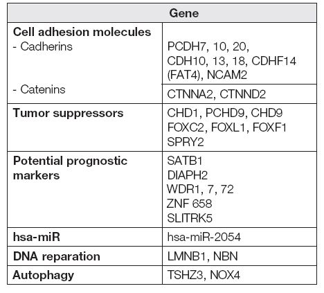 Hypermethylated genes in ovarian cancer tissue