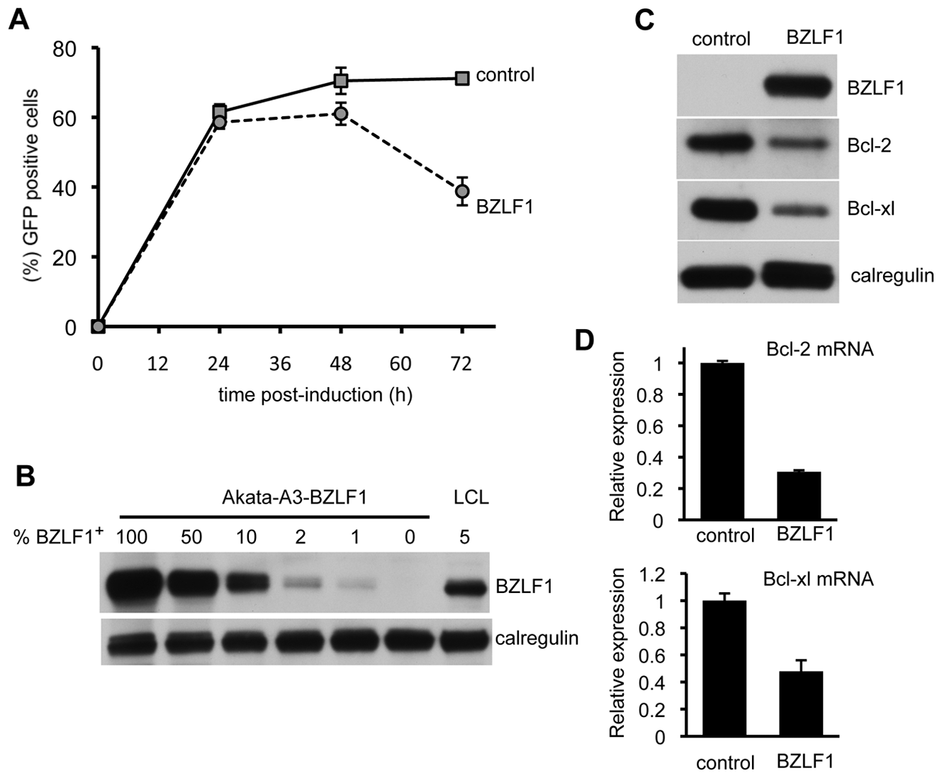 BZLF1 downregulates Bcl-2 family members.