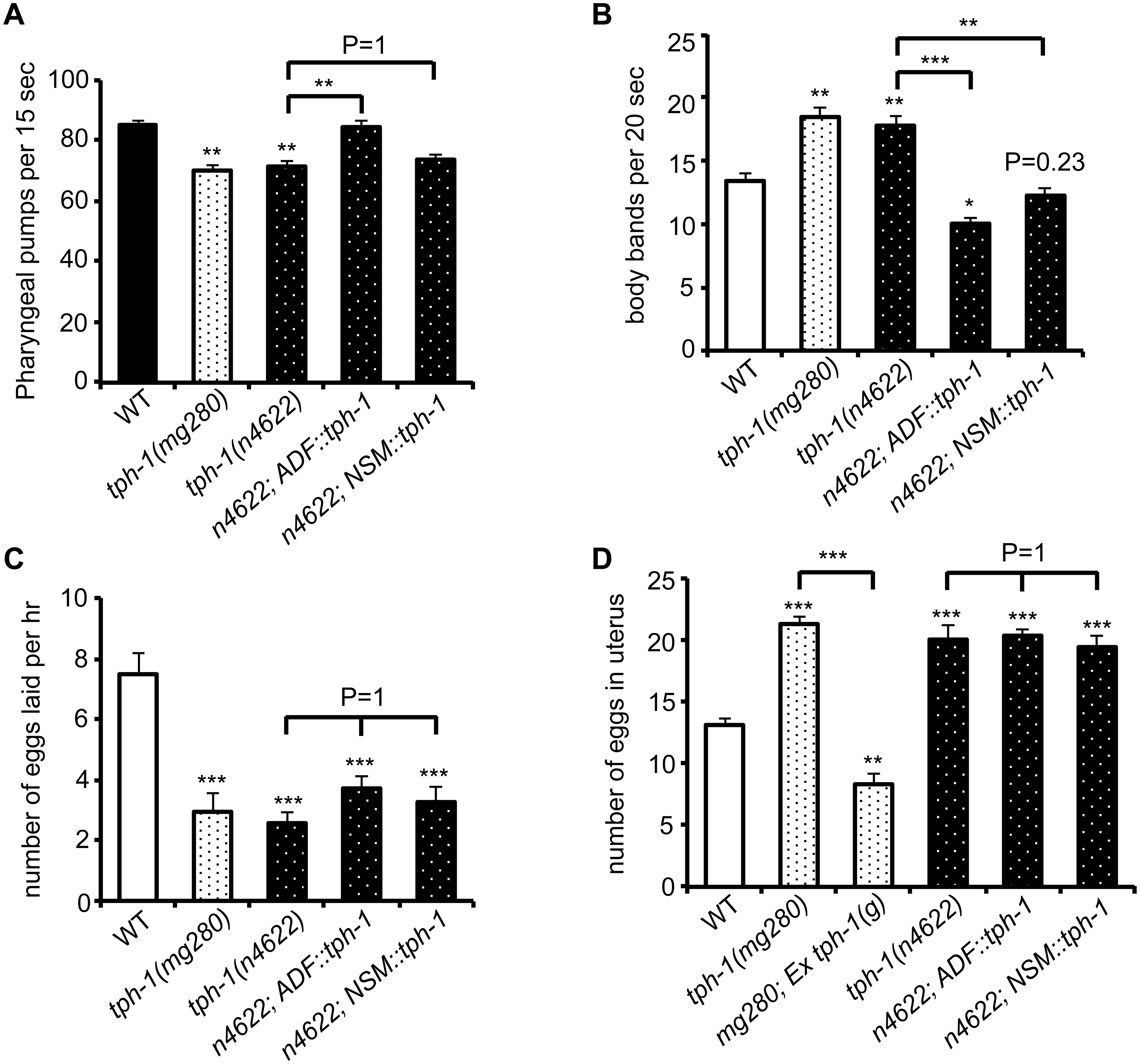 ADF-produced 5-HT modulates specific 5-HT-regulated innate behaviors.