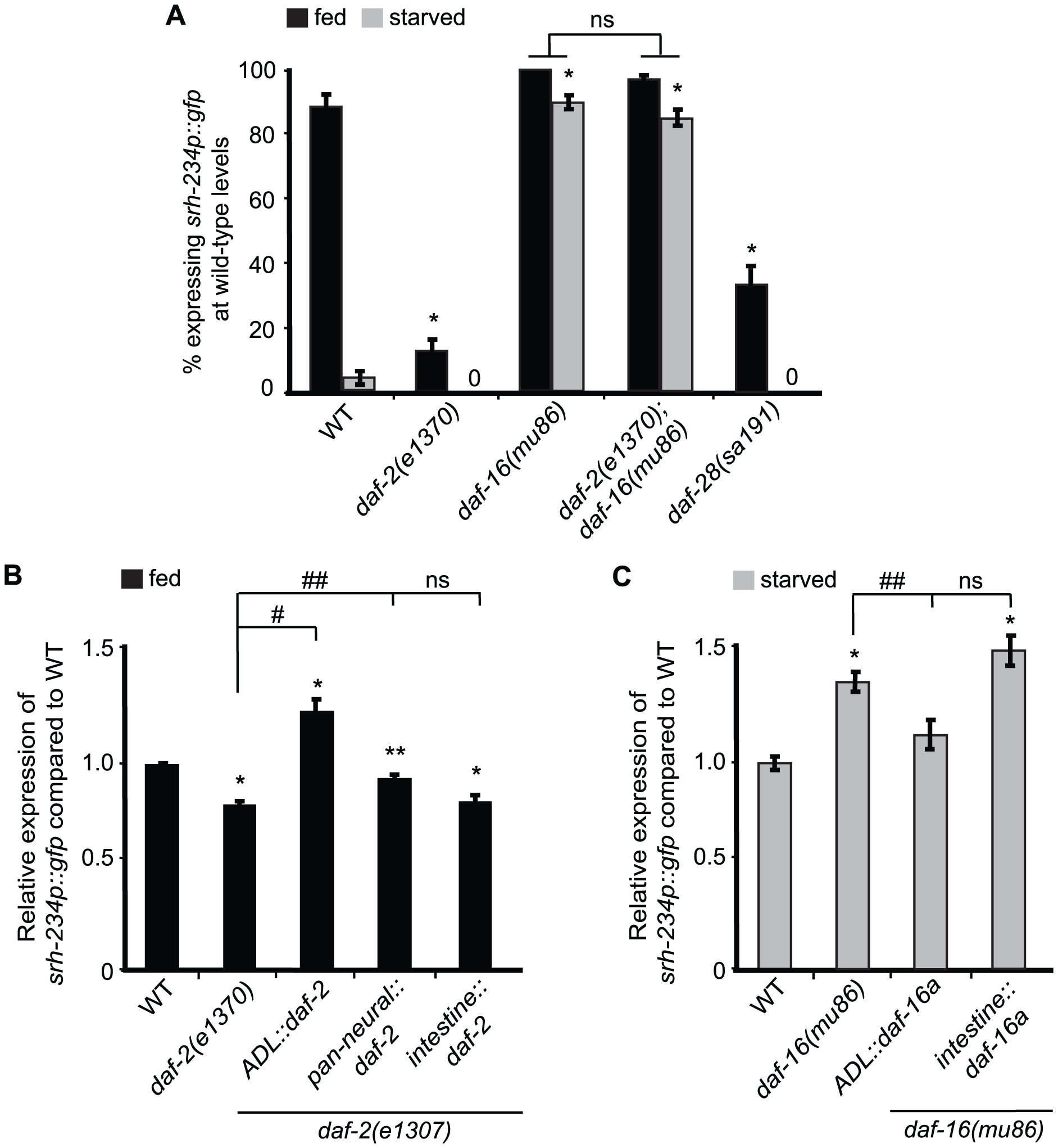 <i>daf-2</i> and <i>daf-16a</i> are required in ADL, but not in the intestine, to regulate <i>srh-234</i> expression.
