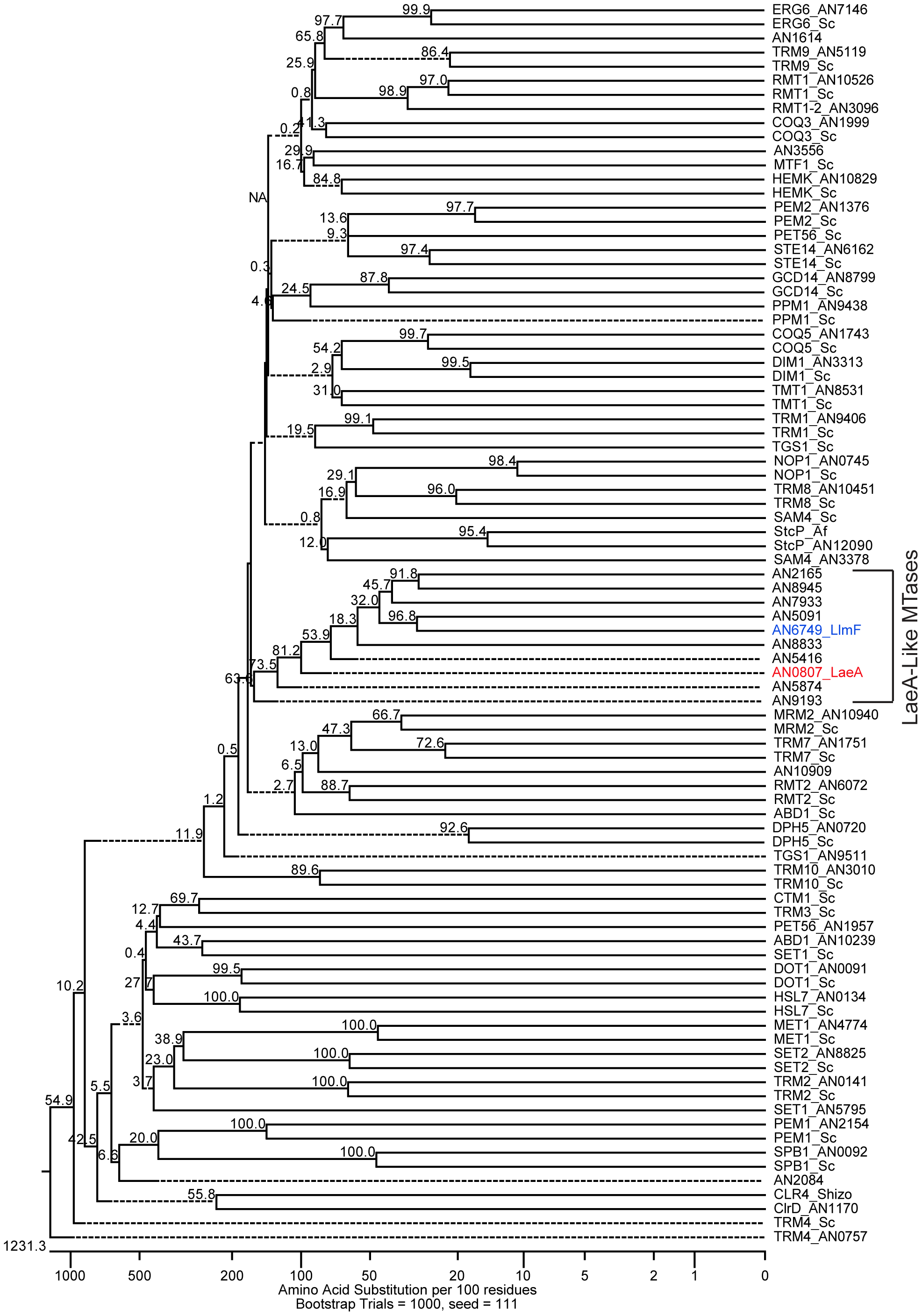 Reverse genetics identified LaeA-like methyltransferases in <i>A. nidulans</i>.
