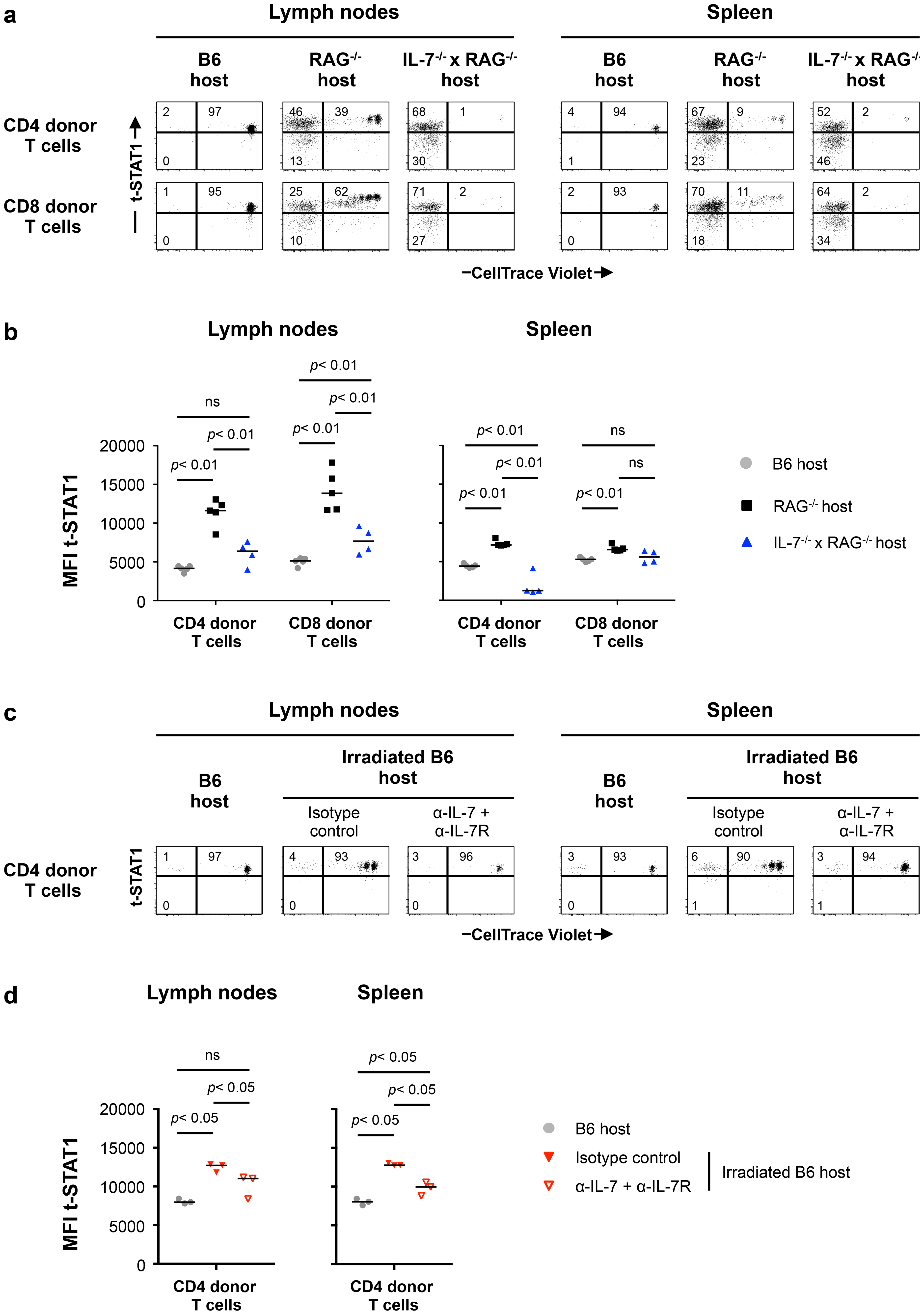 Lymphopenia-induced t-STAT1 upregulation in T cells is partially dependent on IL-7.
