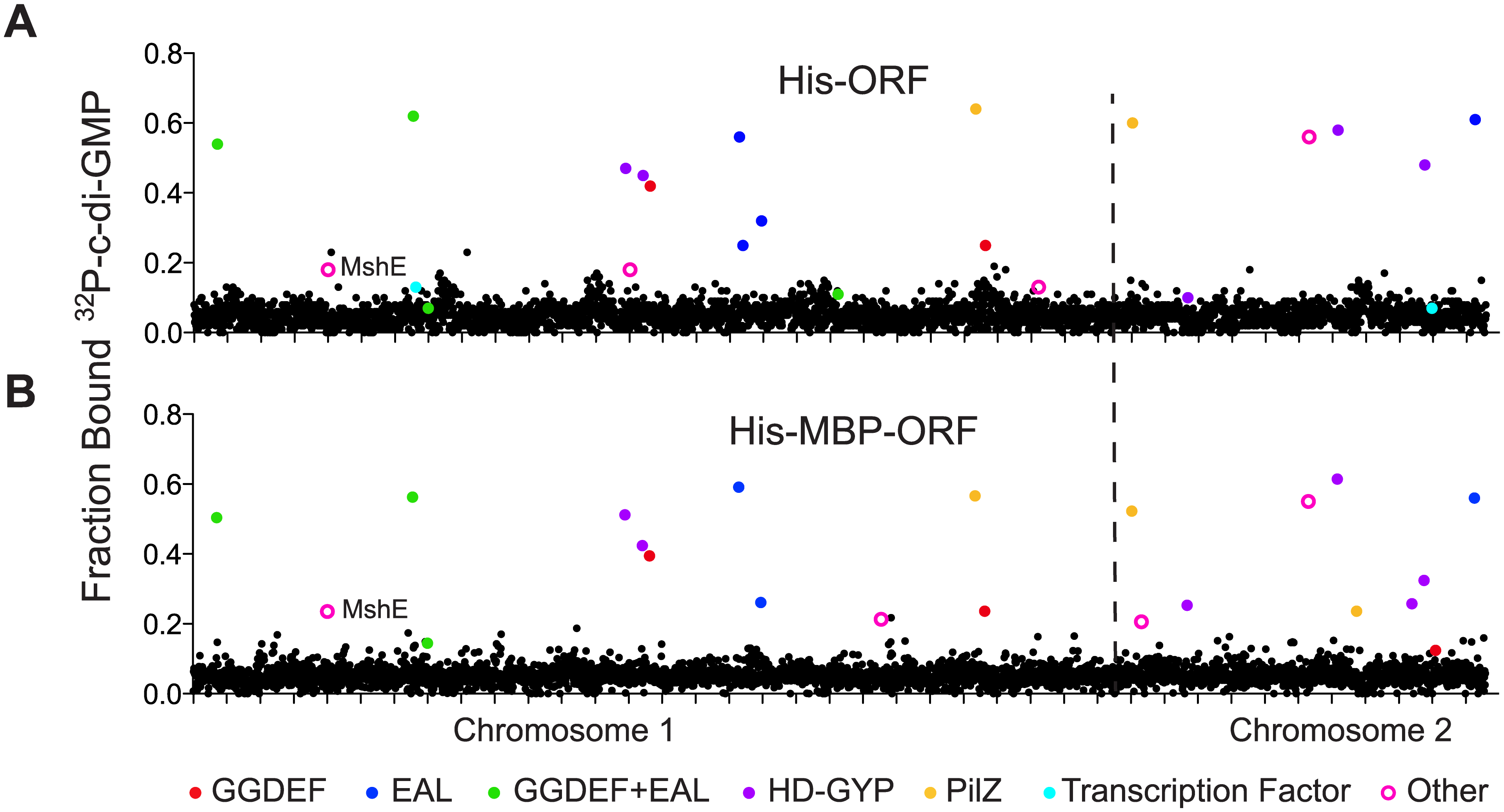 Primary DRaCALA screen of <i>Vibrio cholerae</i> ORF libraries.