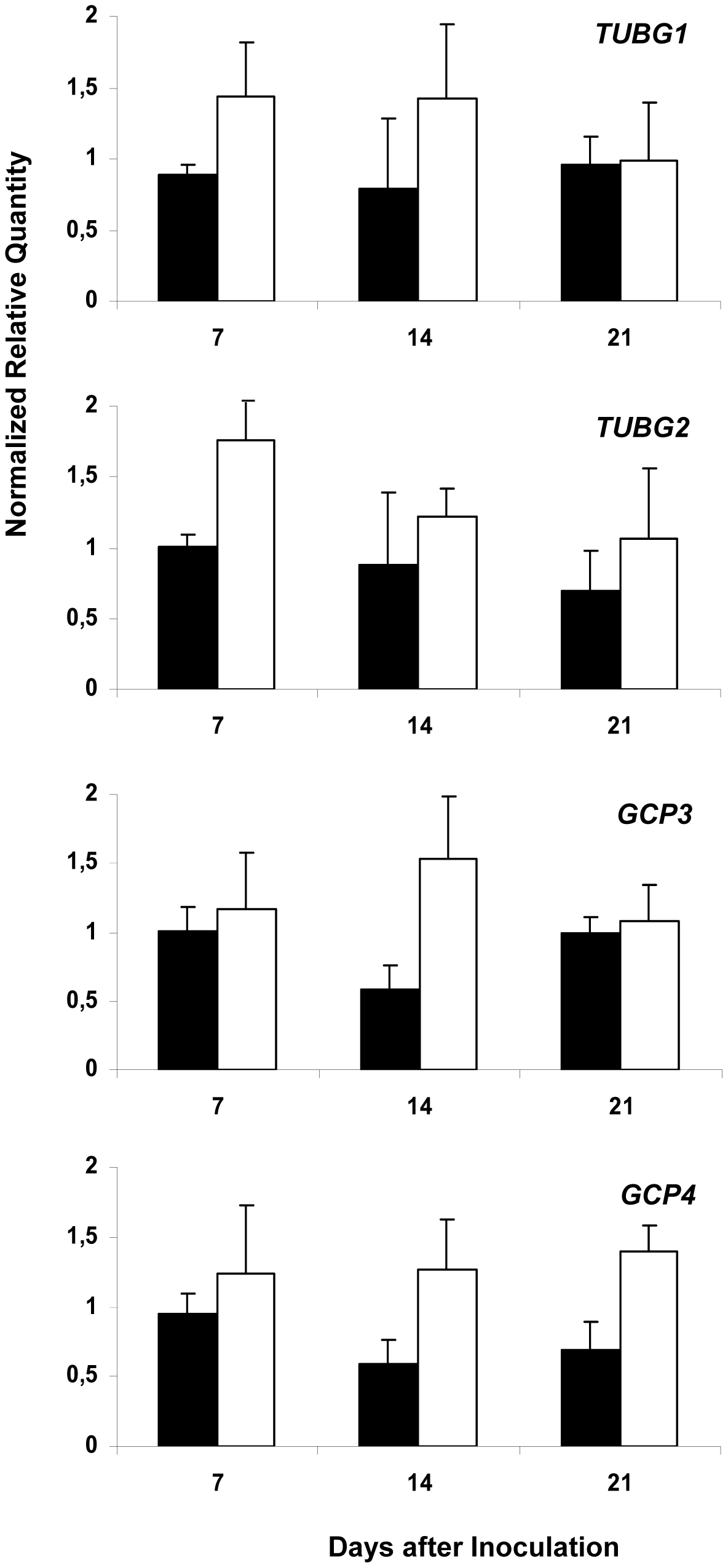 Analysis of Expression Levels of <i>TUBG1</i>, <i>TUBG2</i>, <i>GCP3</i> and <i>GCP4</i> in Galls.