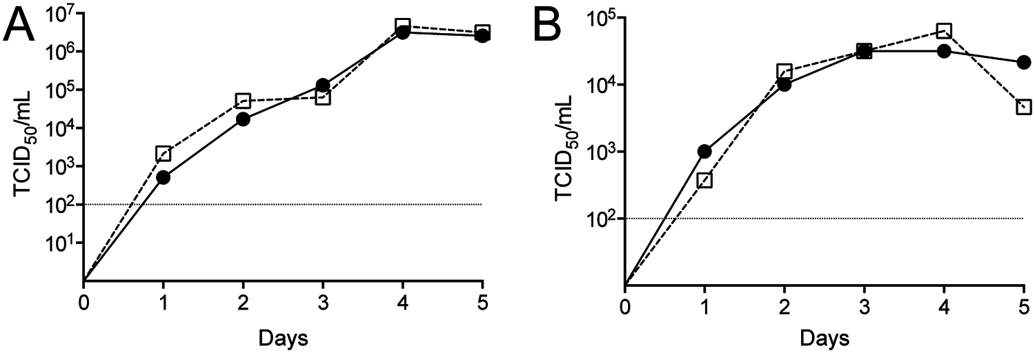 Growth kinetics of CCHFV derived from cDNA.