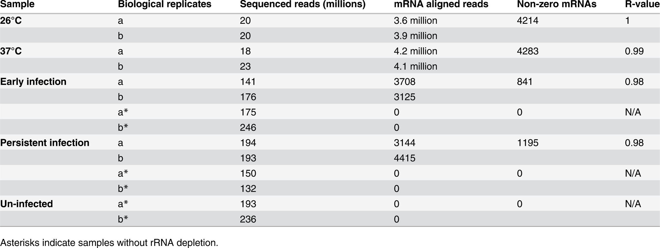 Summary of RNA-seq reads.