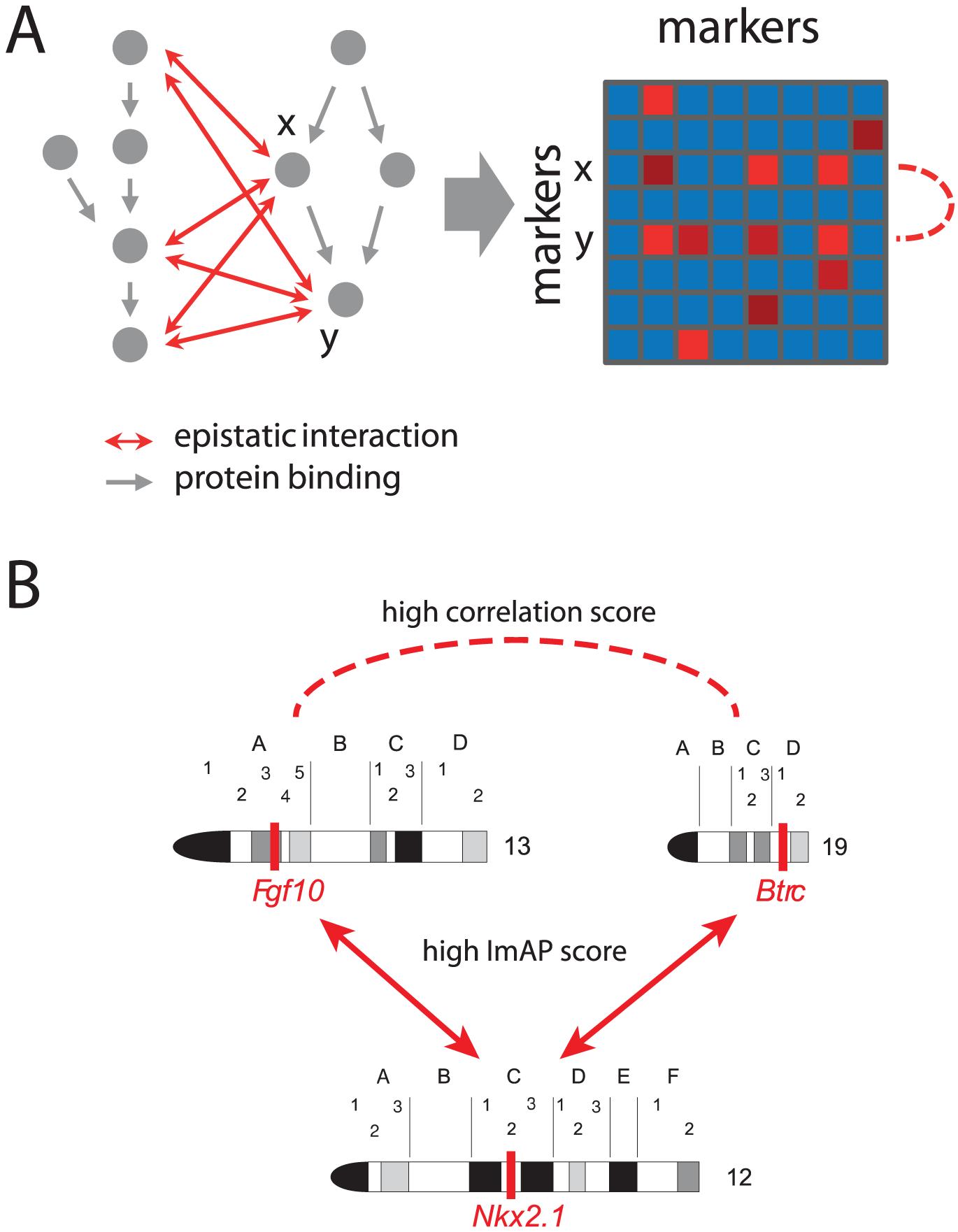 Correlated interaction profiles.